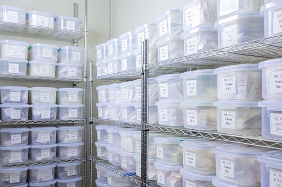 proimages/oem/S065_OEM_Manufactring_process_Storage.jpg
